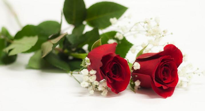 Celebra tu aniversario con flores i parte for Cosas para regalar en una boda