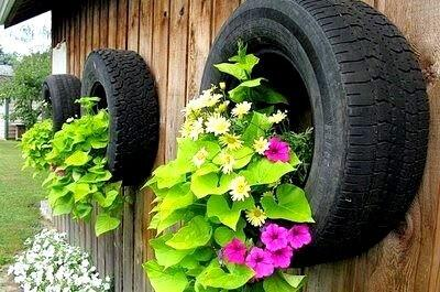 perfectos para plantas colgantes with plantas colgantes exterior