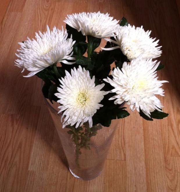 Jarrón con crisantemos blancos