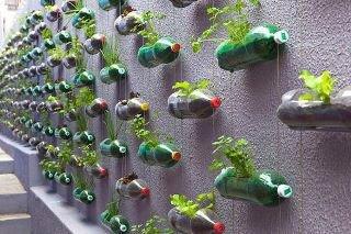 Jardín vertical con botellas