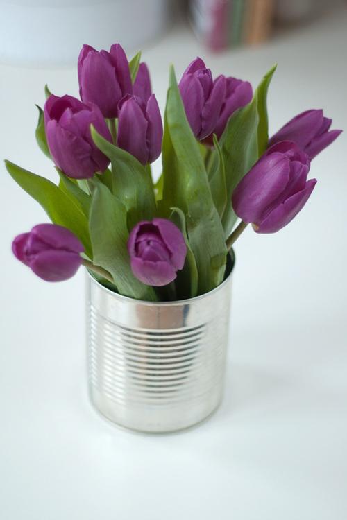 Tulipanes en lata