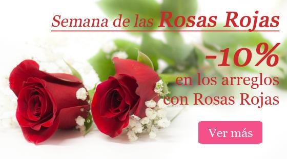 10 % de descuento en rosas rojas