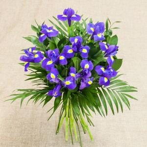 lirios-iris
