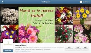 instagram quedeflores