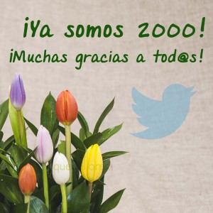 twitter quedeflores