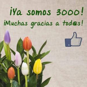 facebook quedeflores