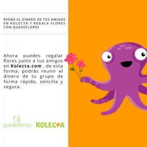 kolecta