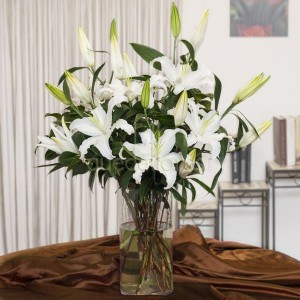 lilium-oriental-blanco