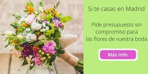 banner bodas blog