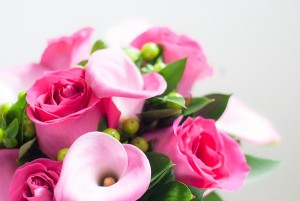 rosas, calas e hipericum