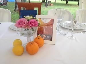 centro naranjas y limones