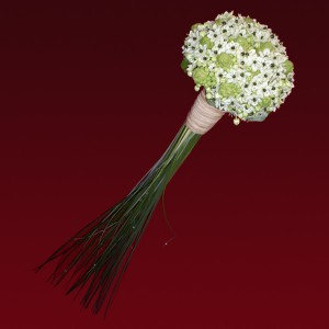 ramo de novia ornithogalum