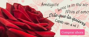 carrusel-amor