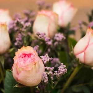 rosa esperance