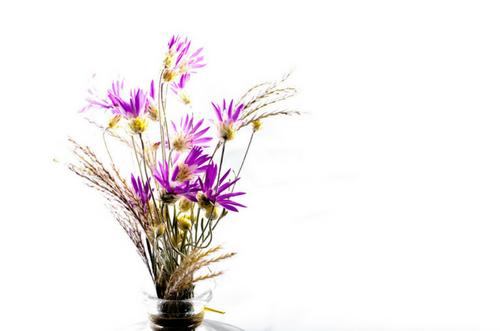 Te enseñamos a secar tus flores (3)