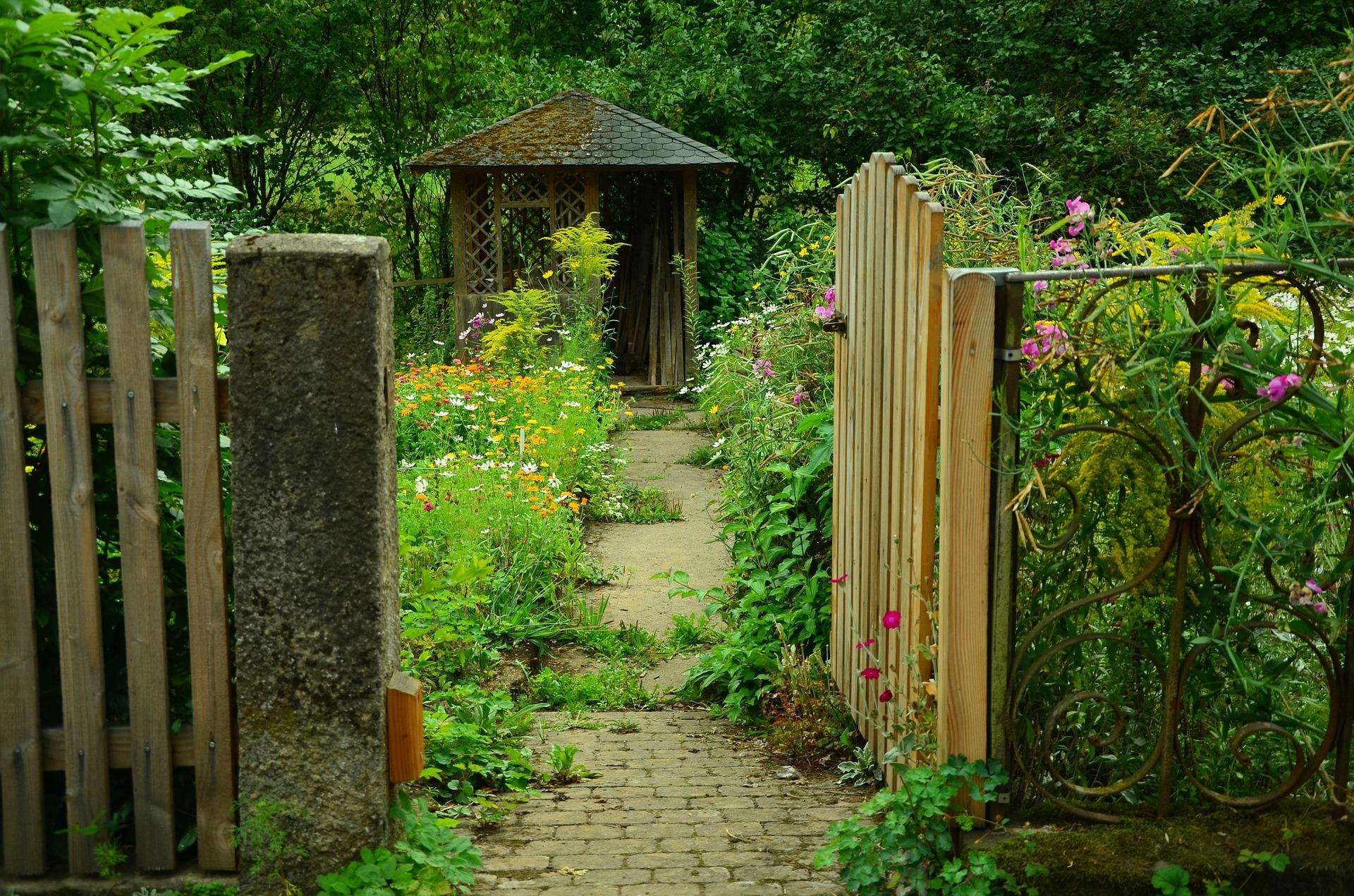 Flores vistosas para tu jardín