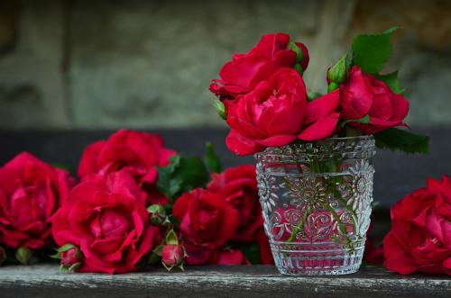 mantener las flores más frescas