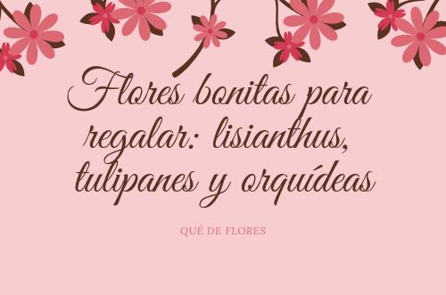 6f65b549f2a Flores bonitas para regalar  lisianthus