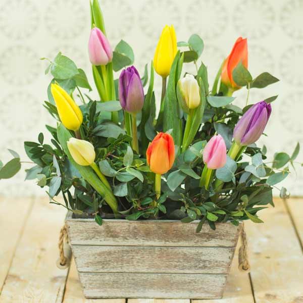 Jardinera de tulipanes exclusiva clientes