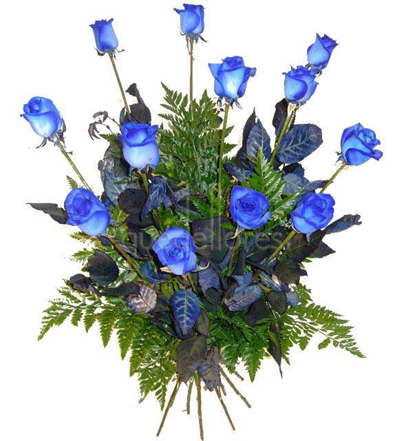 Ramo de rosas azules - tiendaderosas.com - Especialistas en rosas