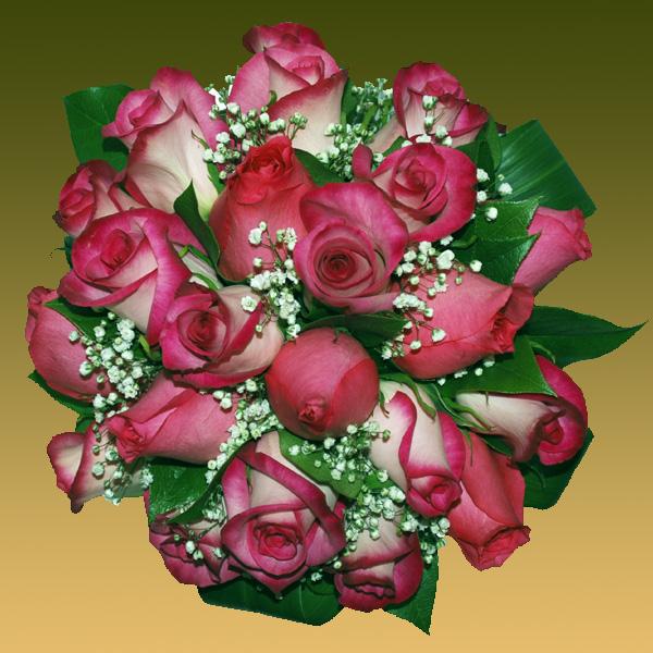 son rosas blush y las flores blanquitas se llaman paniculata tambin le llaman velo de novia