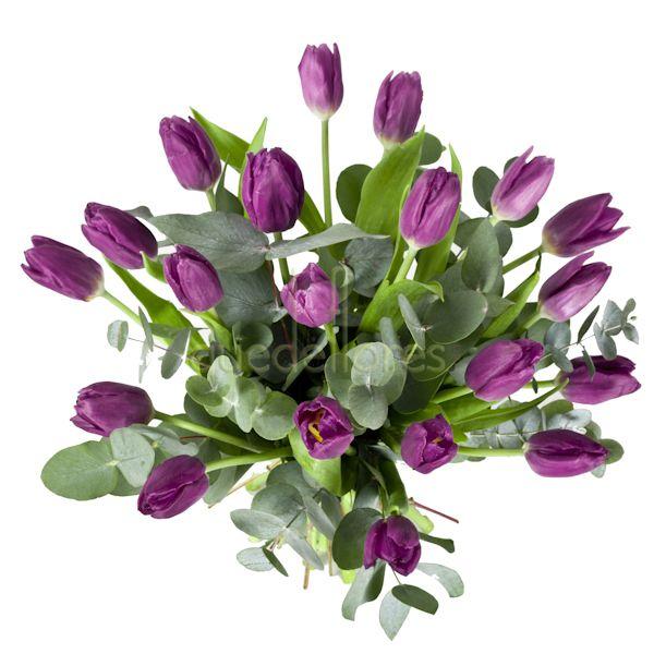 Significado de las flores en los ramos de novia y en las - Significado de los colores de las rosas ...