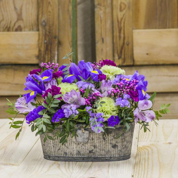 Jardinera De Flores Moradas Y Rosas