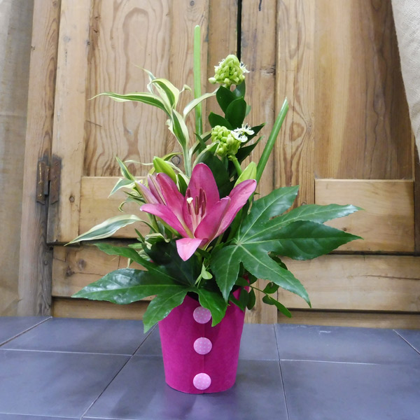 Lilium rosa con Ornithogalum