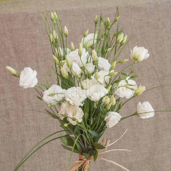 Ramo de Lisianthus blancos