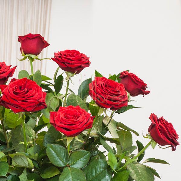 Pin rosas rojas hermosas tattoo on pinterest - Ramos de flores hermosas ...