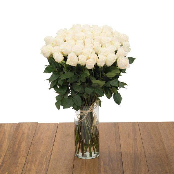 50 White Roses