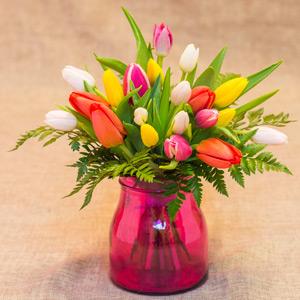 Jarroncito de tulipanes Rainbow