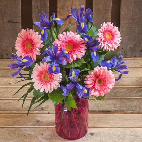 Iris & Pink Daisies