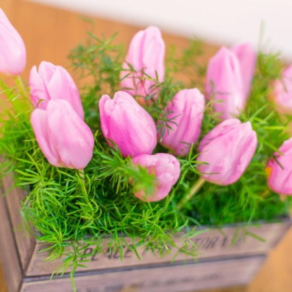 Jardinera de tulipanes rosa Pink Boheme