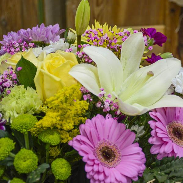 Significado Flores Hortaleza
