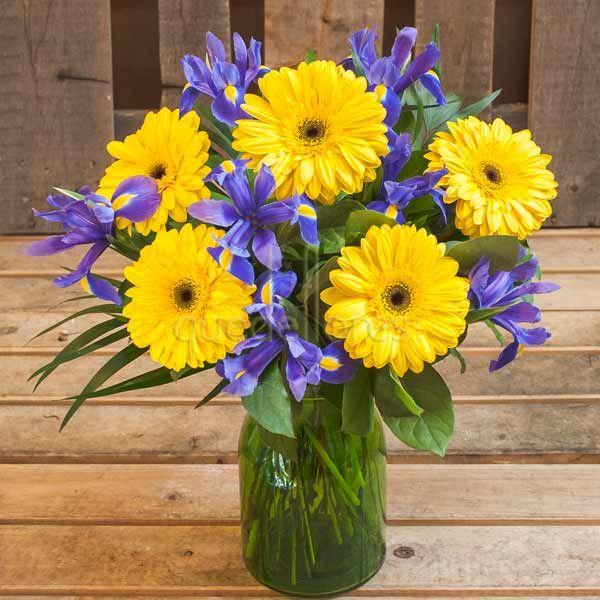 Iris & Yellow Daisies