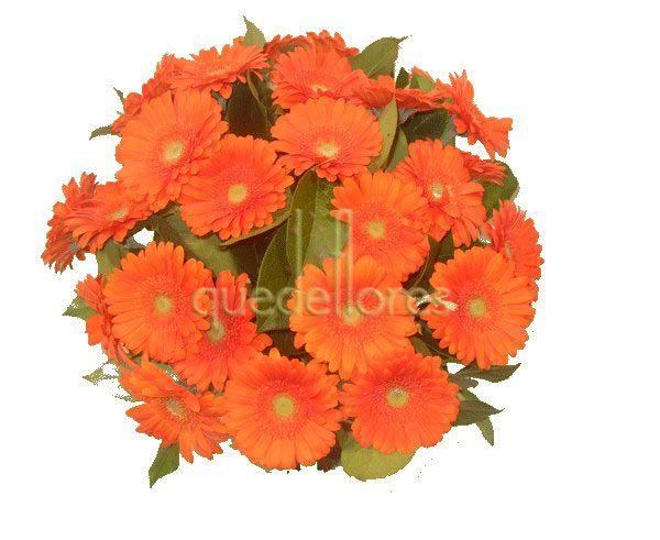 Bouquet de gerberas naranjas.