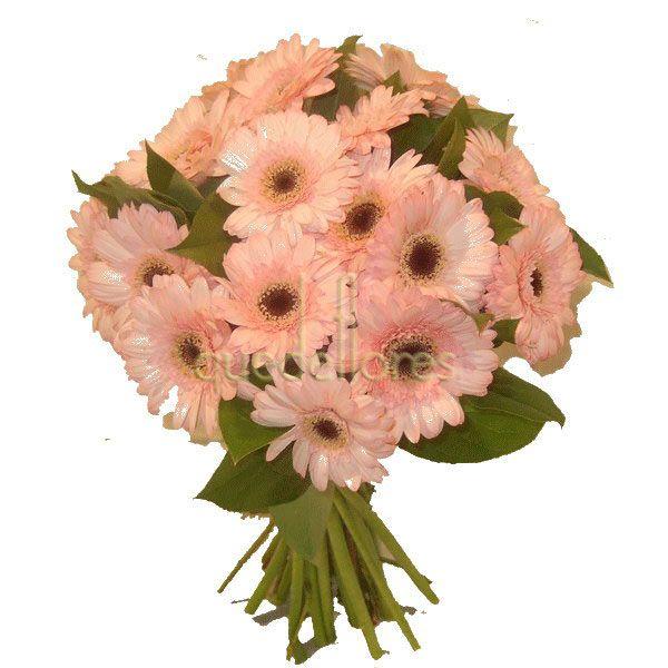 Bouquet de gerberas rosas