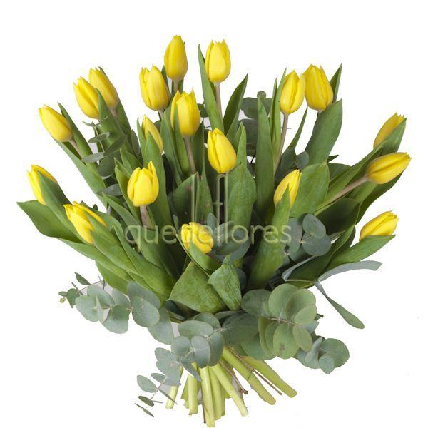 Los Tulipanes Flores Perfectas Para Ellos