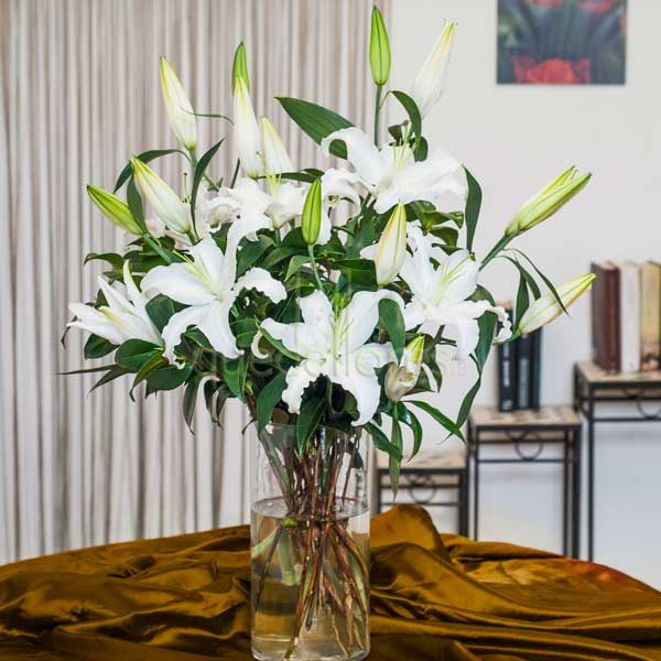 Ramo de Lilium Blanco Oriental
