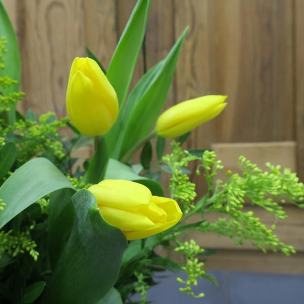 Ramo de tulipanes amarillos con solidago