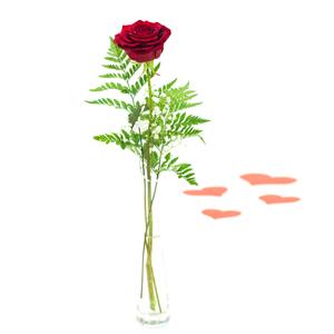 Rosa Roja en Violetero