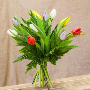 Tulipanes multicolor.